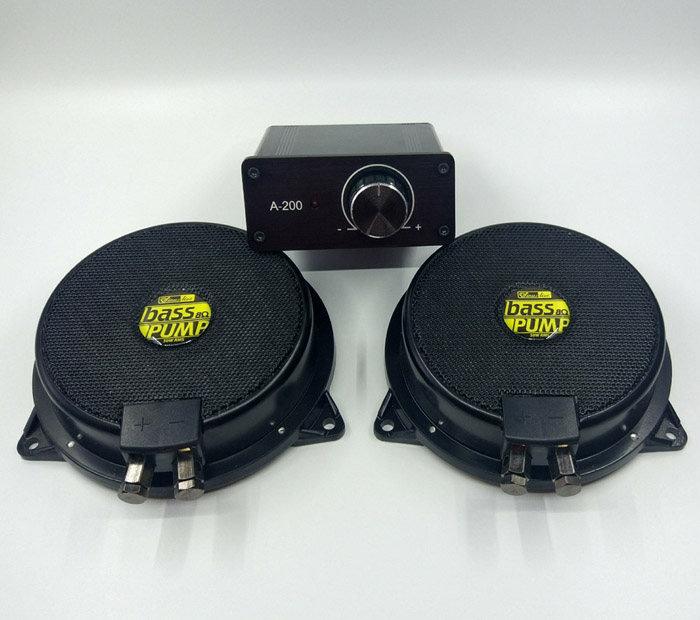 100w amplifier and 2 pieces 50 W bass pump